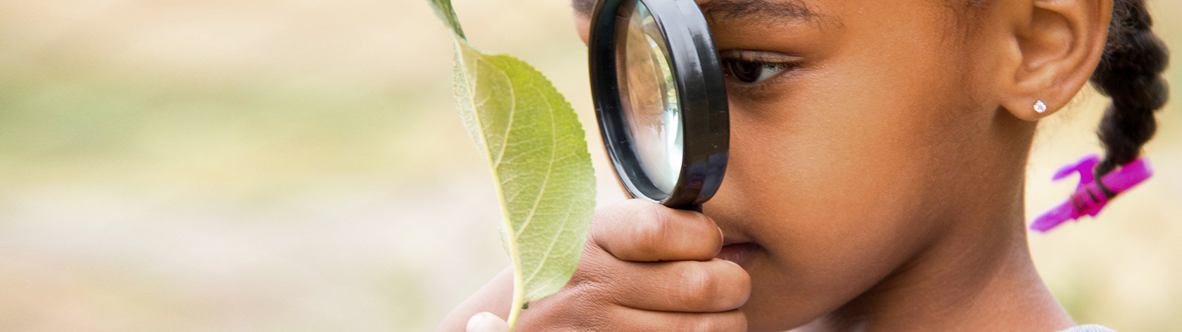 Curious child ispecting a leaf with a magnifying glass