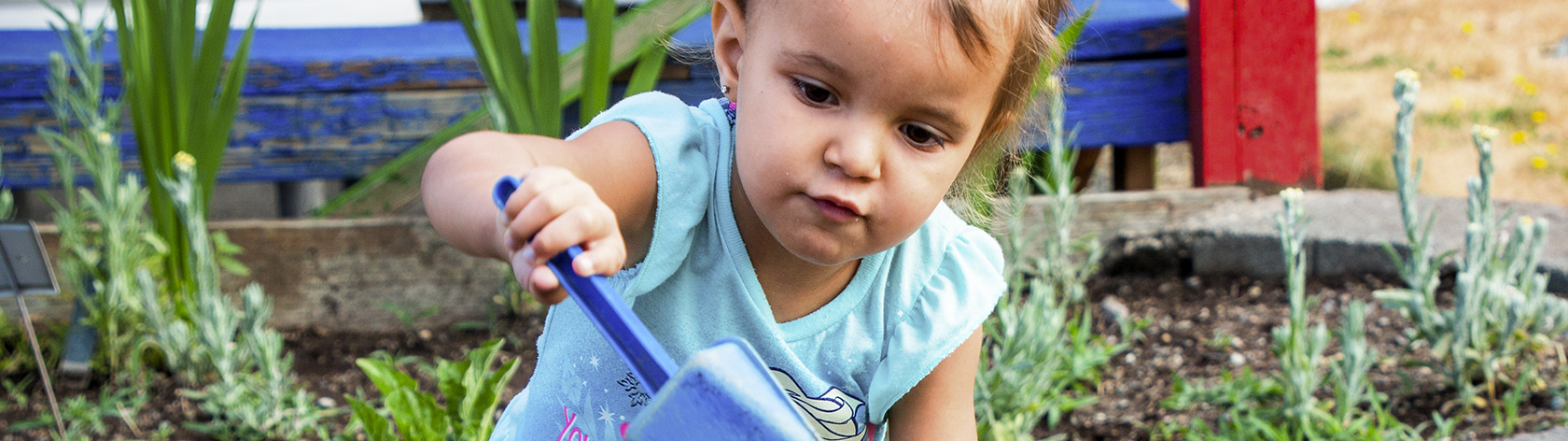 Preshool girl digging in a garden with a hand-held plastic shovel